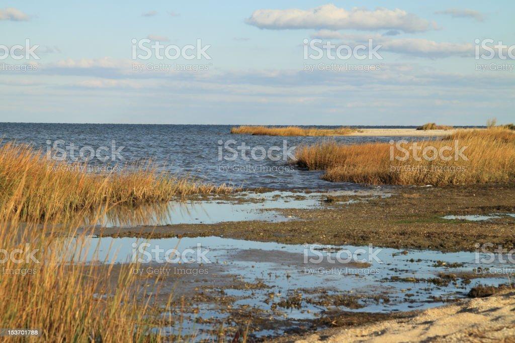 Chesapeake Bay Beach And Marsh Combine With Clouds stock photo