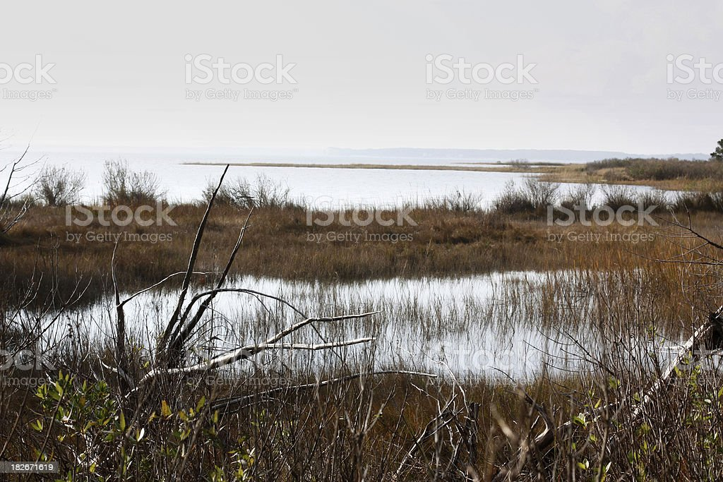 Chesapeake Bay estuary in autumn royalty-free stock photo