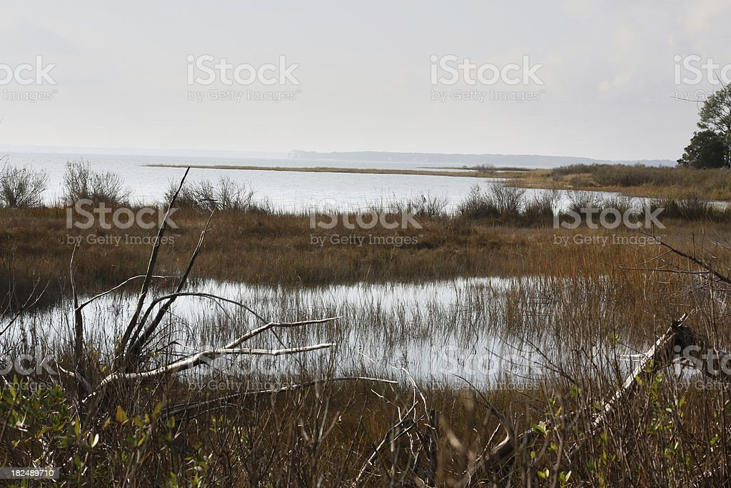 Chesapeake Bay estuary in fall royalty-free stock photo