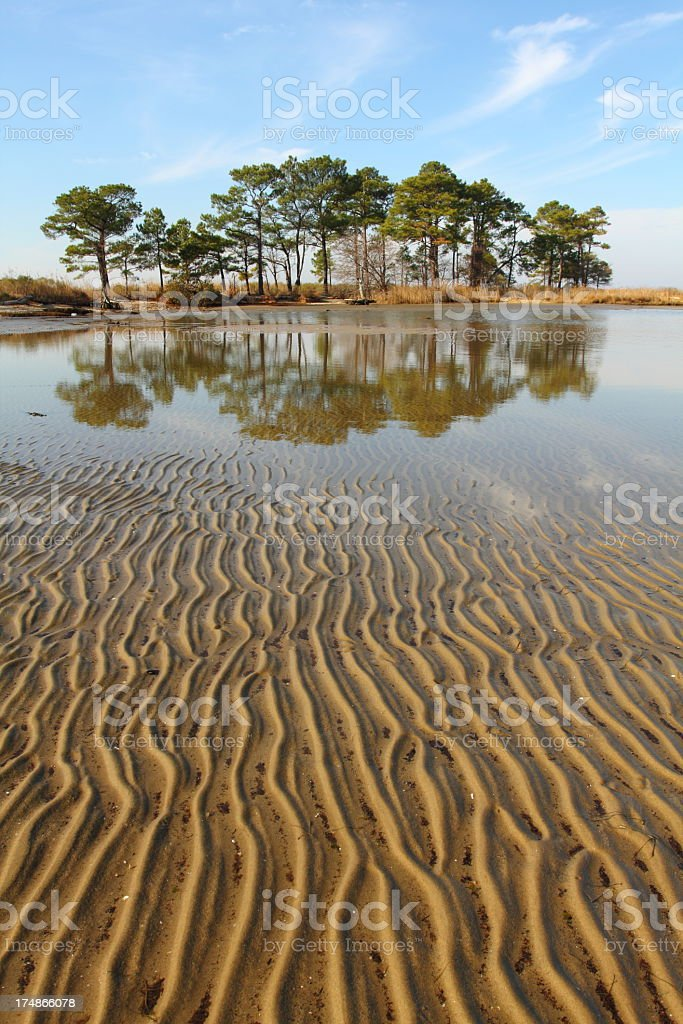 Chesapeake Bay Tidal Flat stock photo