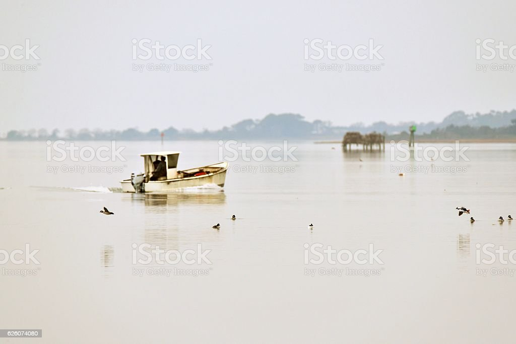 Chesapeake Oyster Skiff in Sinepuxent Bay stock photo