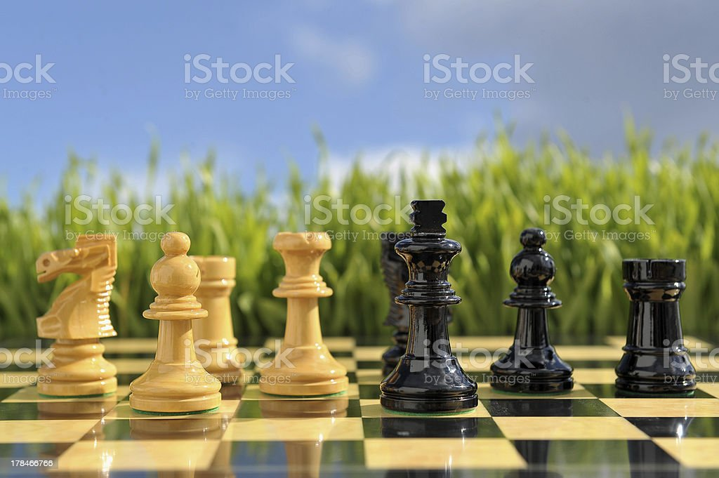 Xadrez / Chess / C?u azul royalty-free stock photo