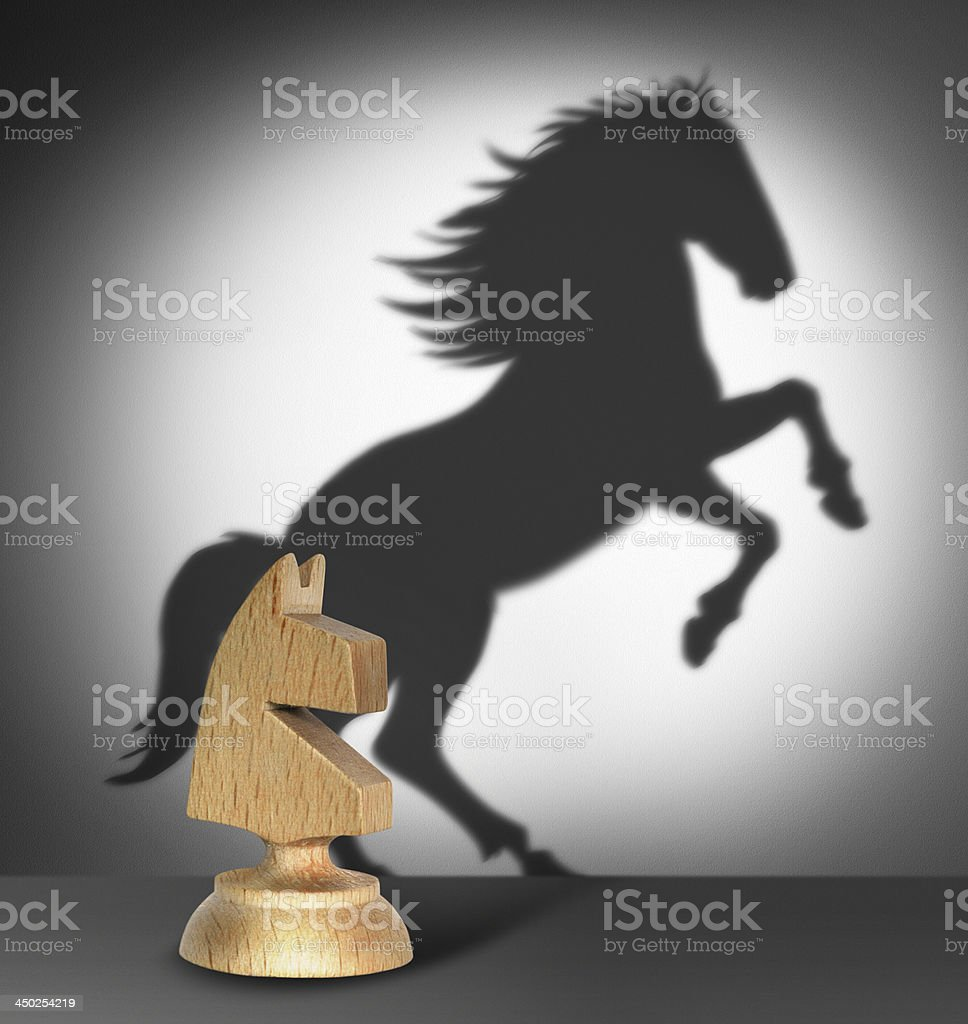 Chess horse with  shadow stock photo