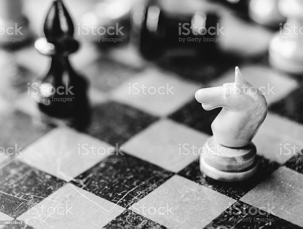 Chess knight and bishop royalty-free stock photo
