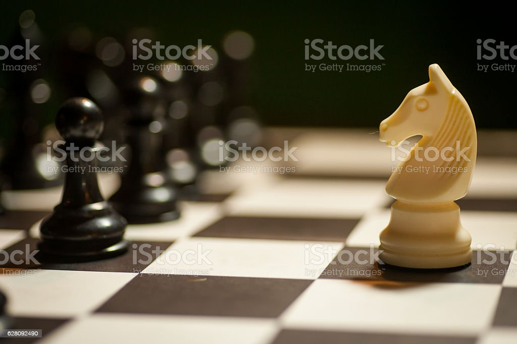 Chess white horse moving stock photo