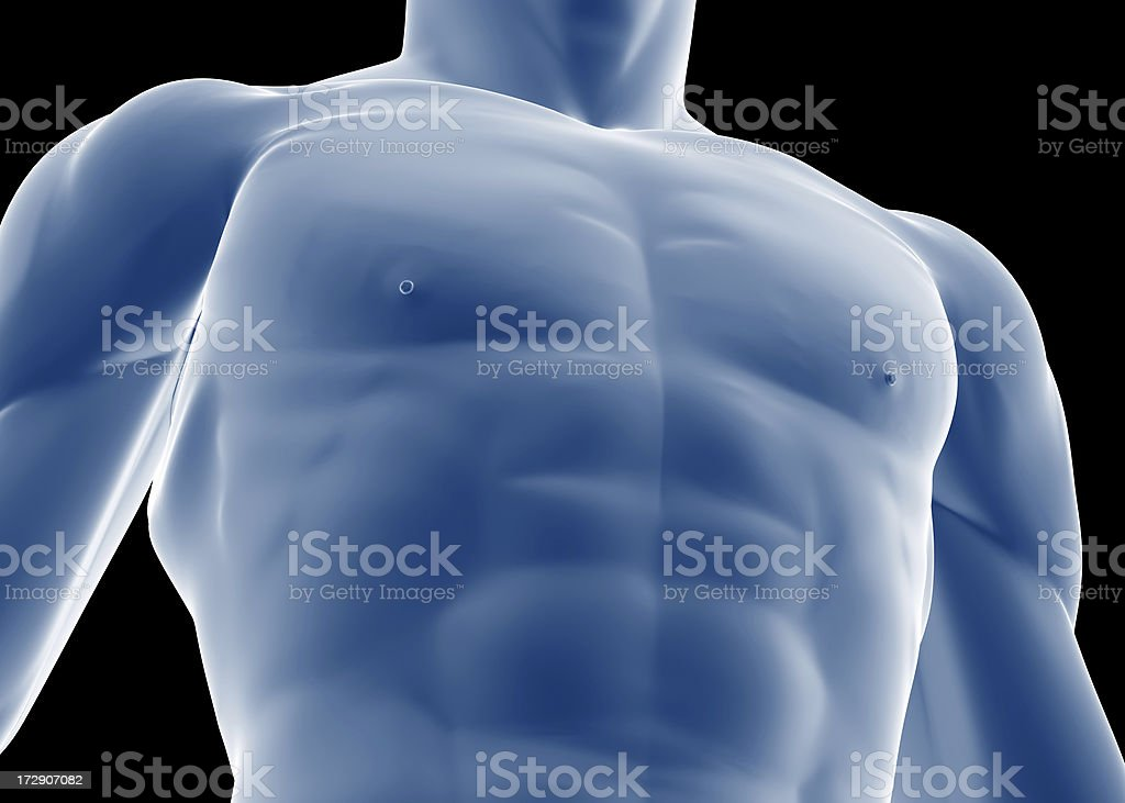 Chest of a man royalty-free stock photo