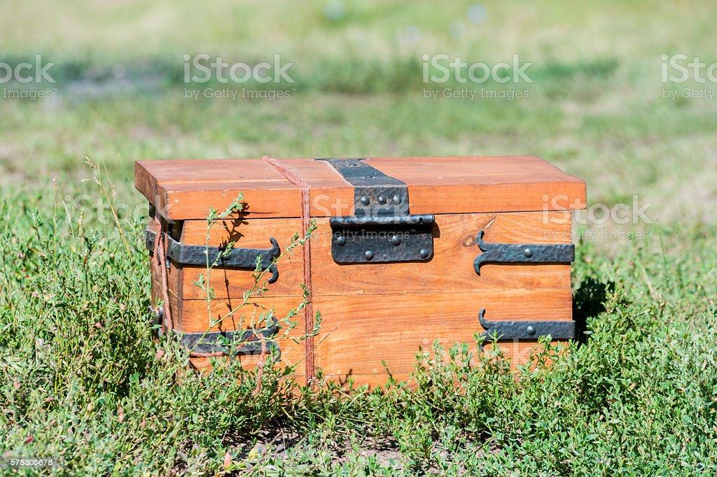 chest vintage stock photo