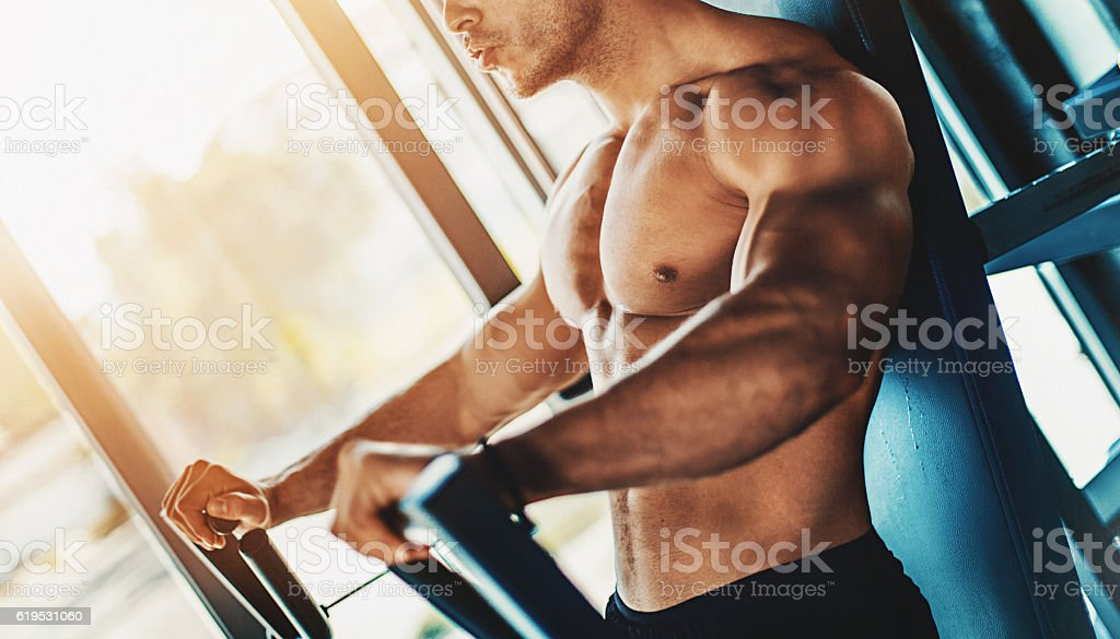 Chest workout at gym. stock photo