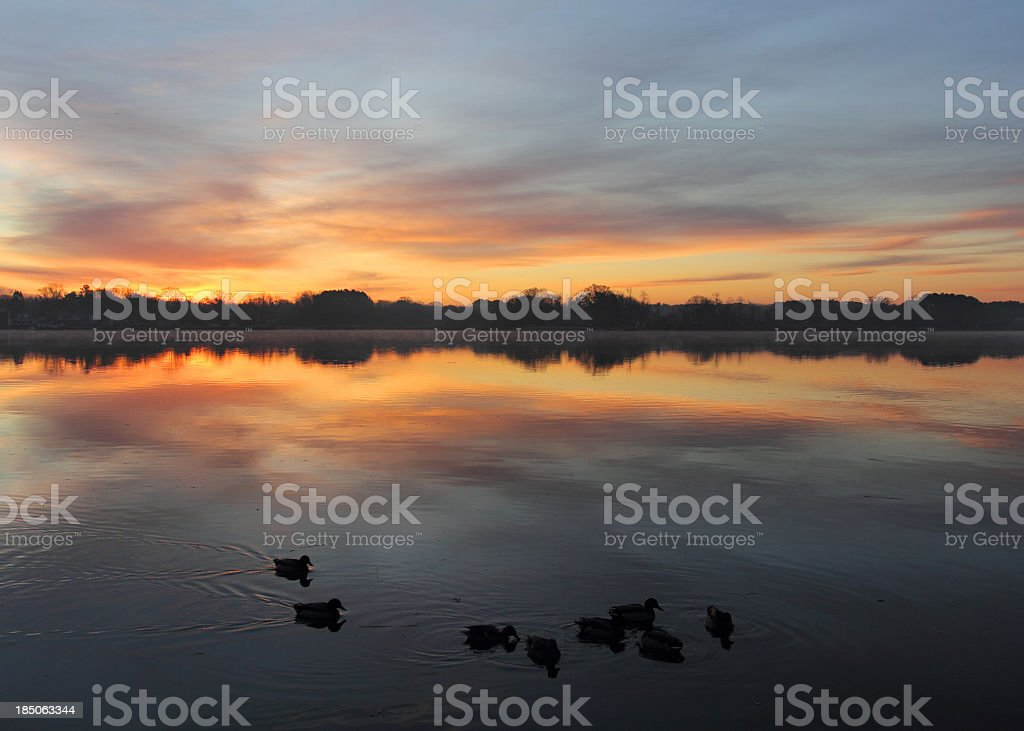 Chester River at Dawn stock photo
