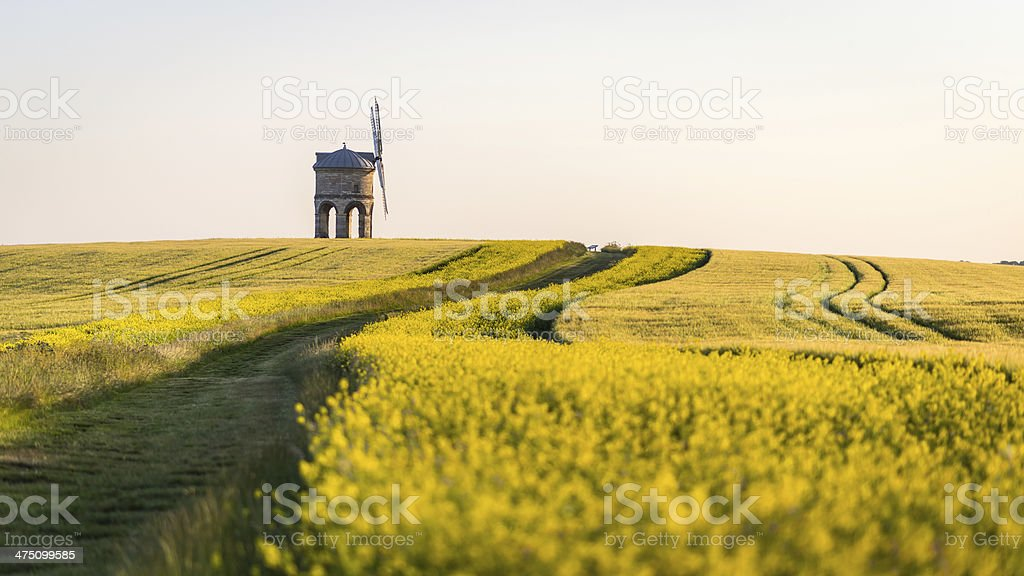 Chesterton windmill surrounded by rapeseed field stock photo