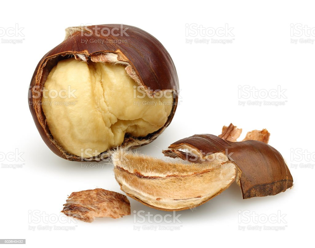 Chestnut and Peeled Chestnut stock photo
