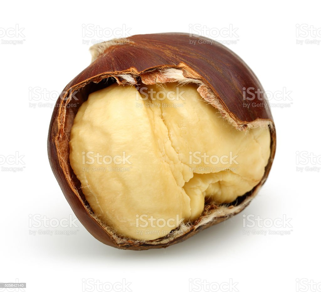Chestnut and Peeled Chestnut stock photo