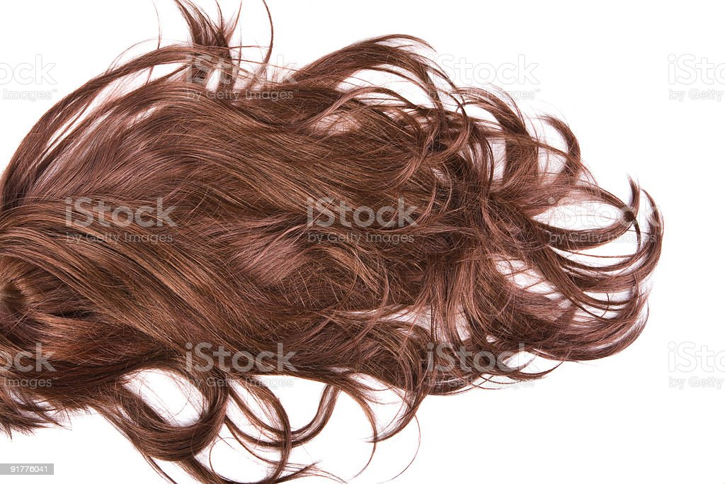Chestnut brown hair on white background royalty-free stock photo
