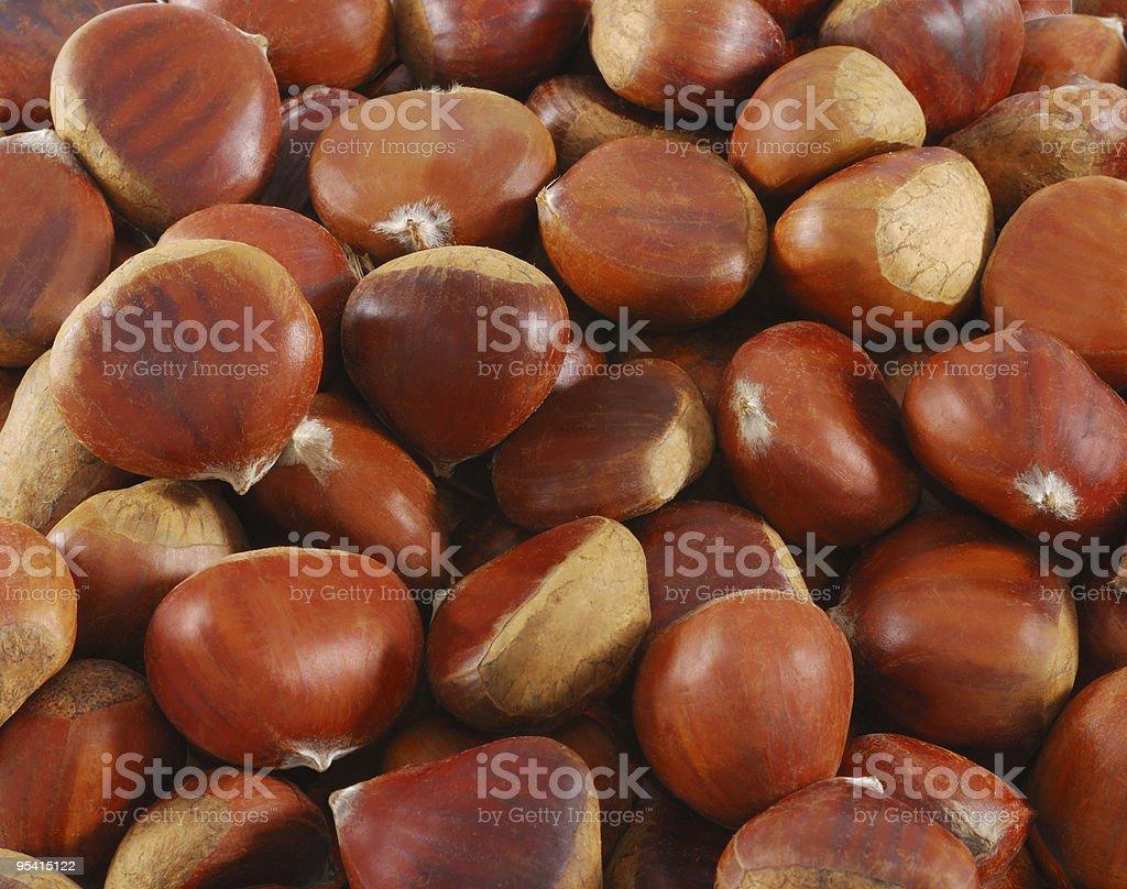 Chestnut closeup royalty-free stock photo