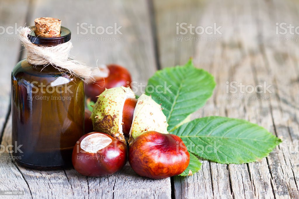 Chestnut extract in the bottle stock photo