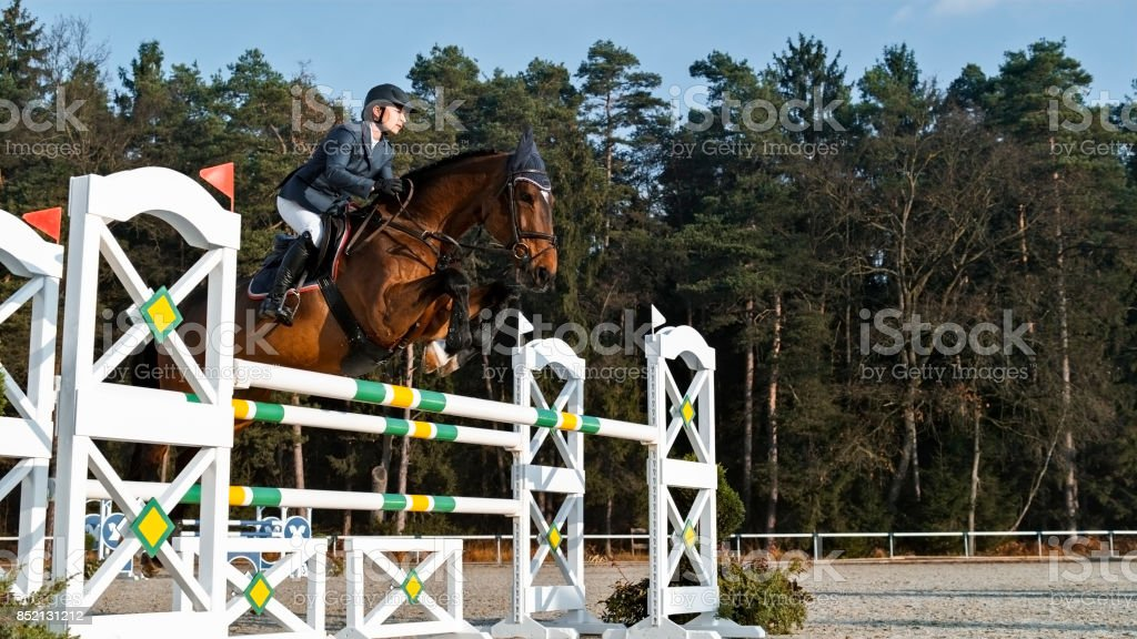 Chestnut horse and his rider jumping an oxer stock photo