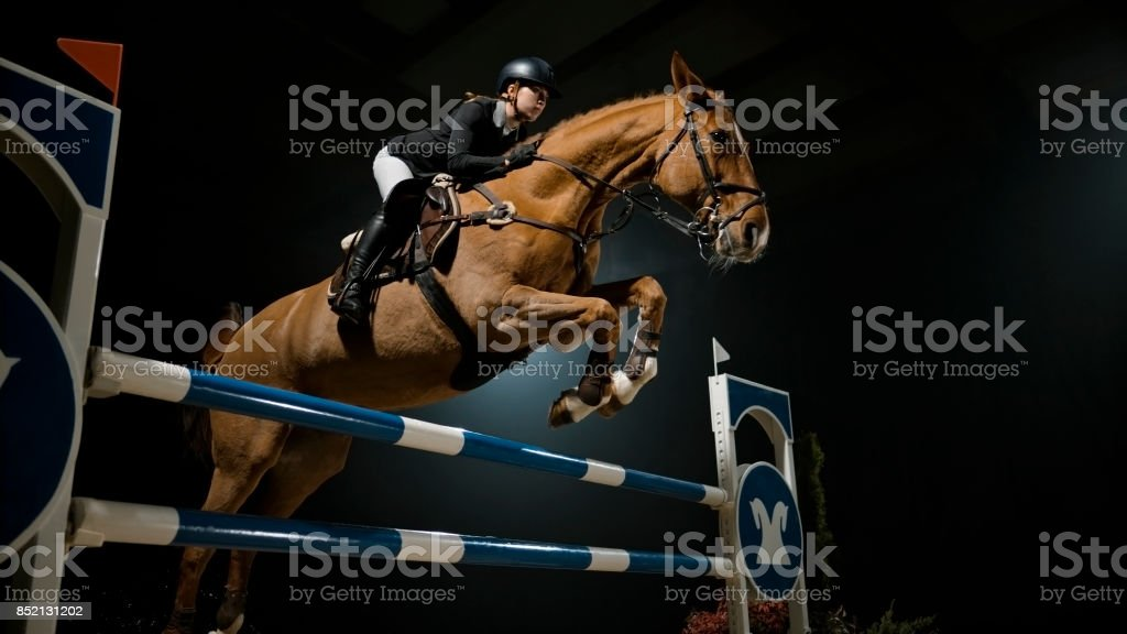 Chestnut horse and it's rider jumping over rail stock photo