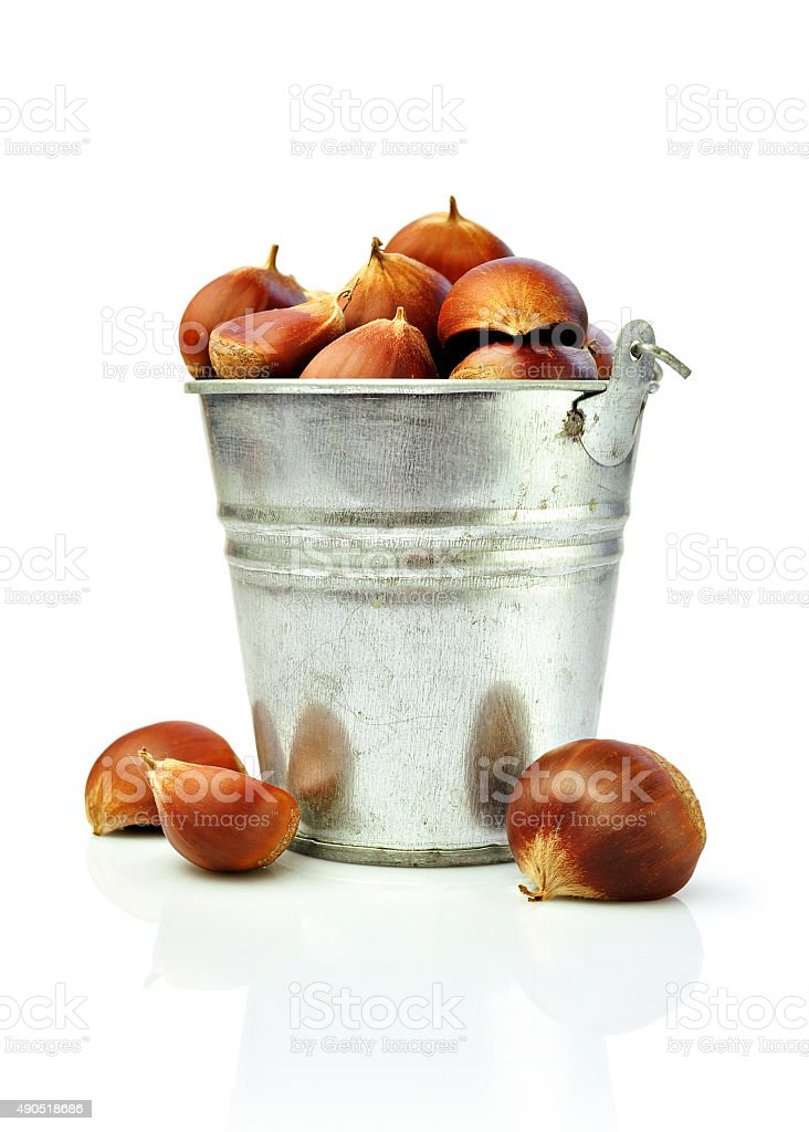 Chestnut in a bucket stock photo