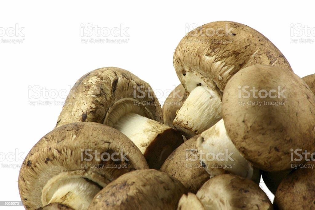 chestnut mushrooms royalty-free stock photo