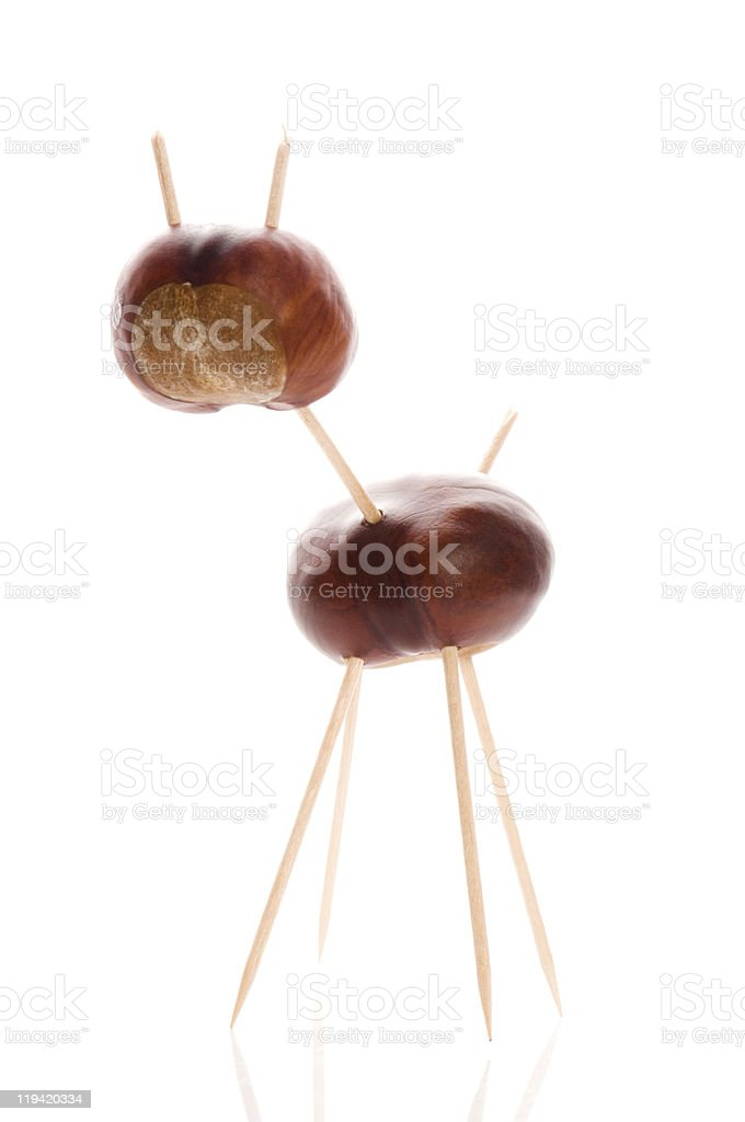 chestnut toy stock photo