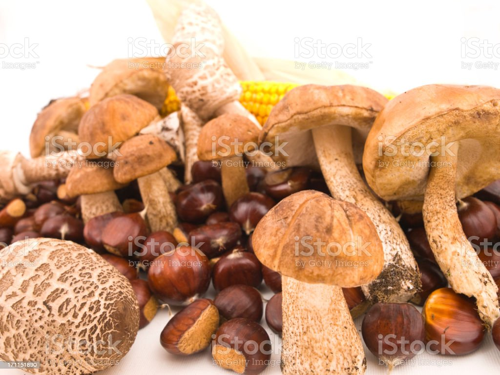 Chestnuts and mushrooms. stock photo