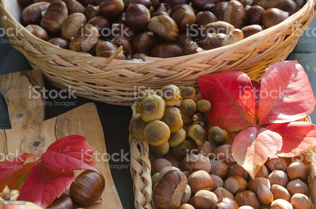 Chestnuts hazelnuts and red autumn leaves royalty-free stock photo