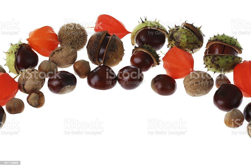 Chestnuts, hazelnuts and walnuts royalty-free stock photo