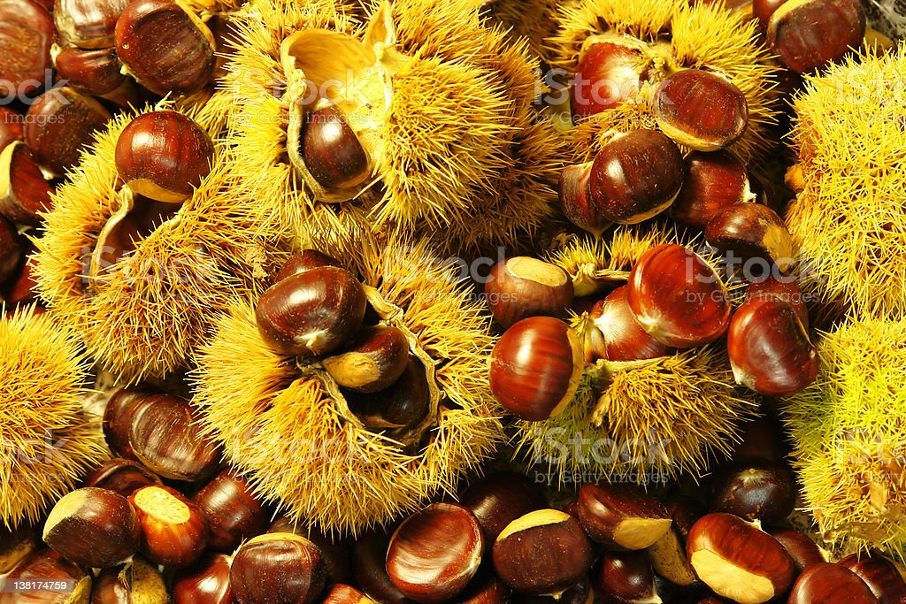 Chestnuts in a pile surrounded by casings stock photo