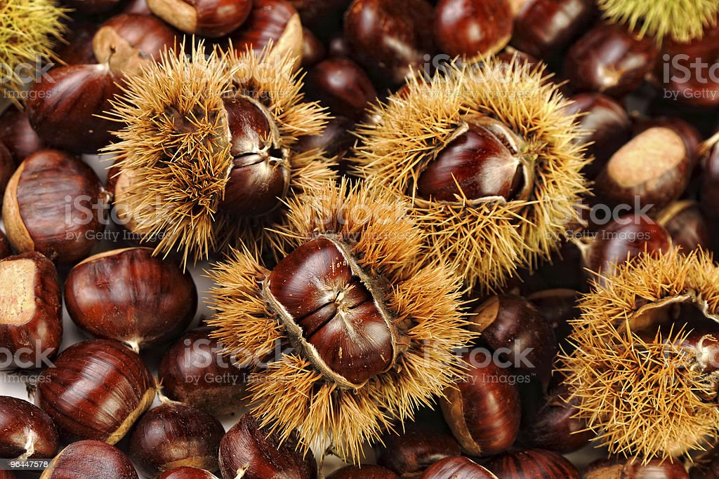 chestnuts, nature background stock photo