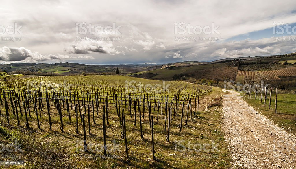 Chianti royalty-free stock photo