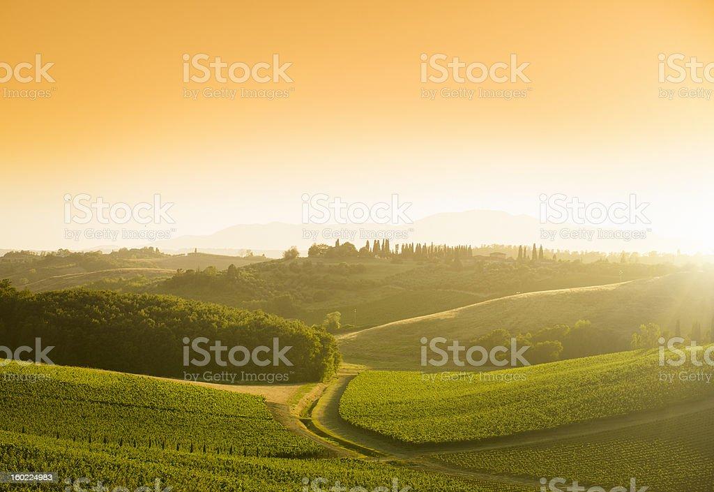 Chianti Region hills at sunset in Tuscany - Italy royalty-free stock photo