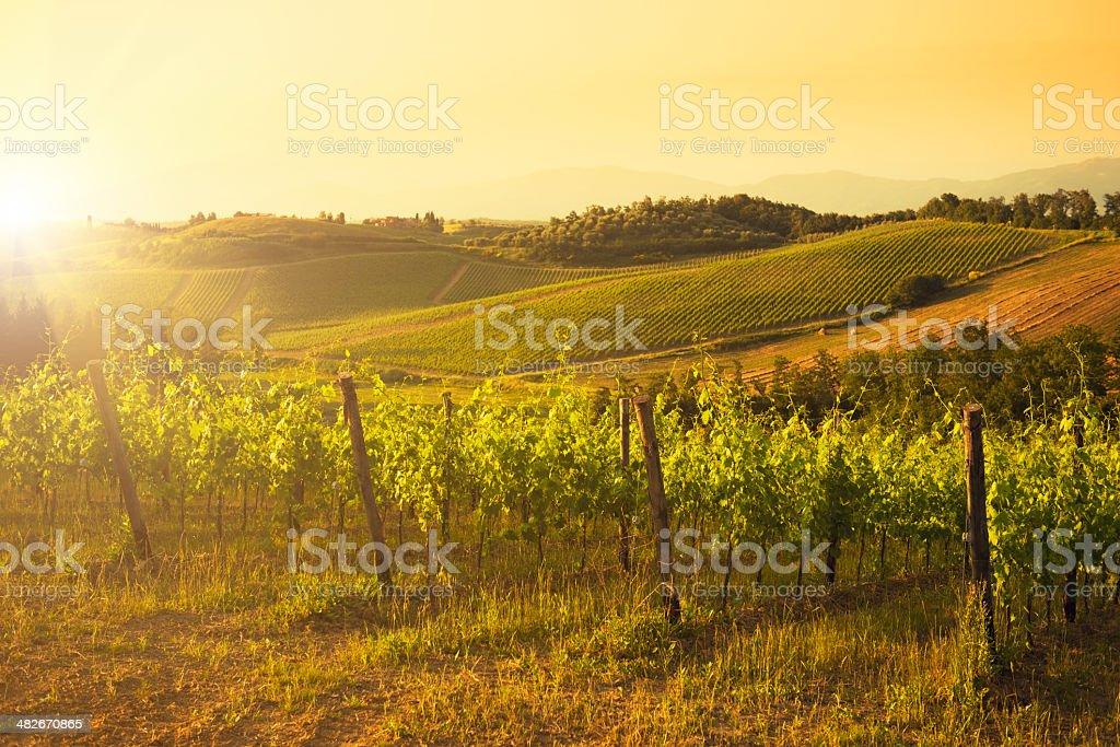 Chianti Region hills at sunset in Tuscany - Italy stock photo