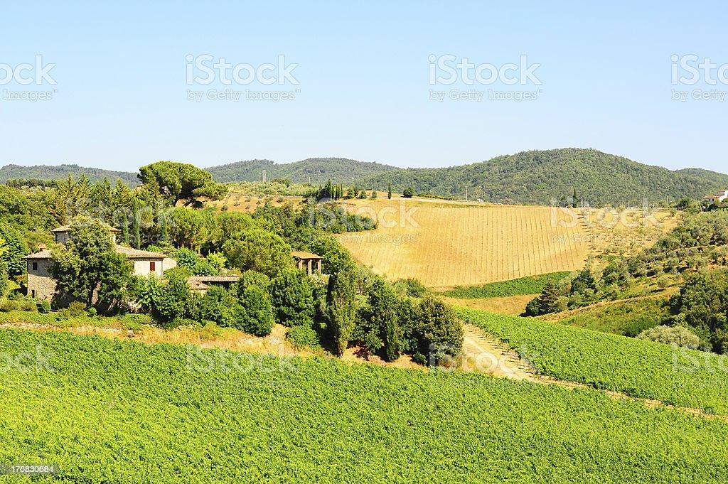 Chianti Region royalty-free stock photo