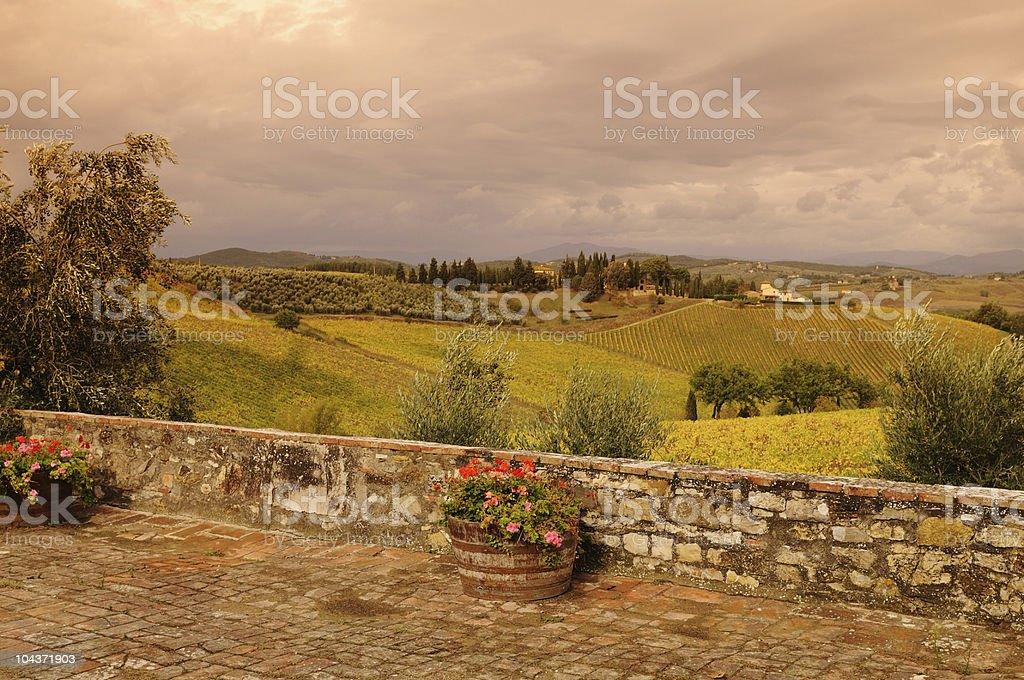 Chianti Vineyards Fall View of Top stock photo
