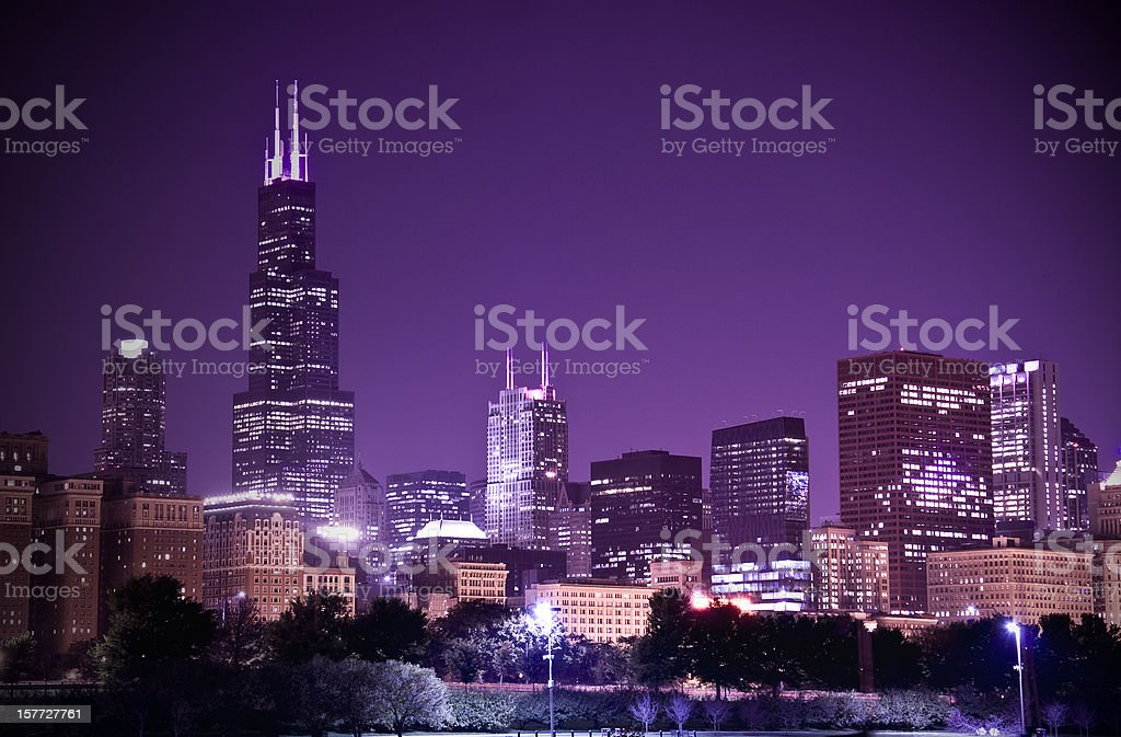 Chicago in the night royalty-free stock photo