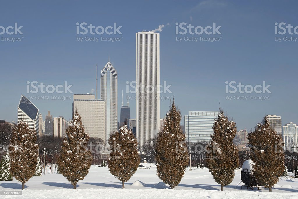 Chicago In Winter royalty-free stock photo
