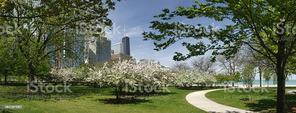 Chicago park and John Hancock building in spring stock photo