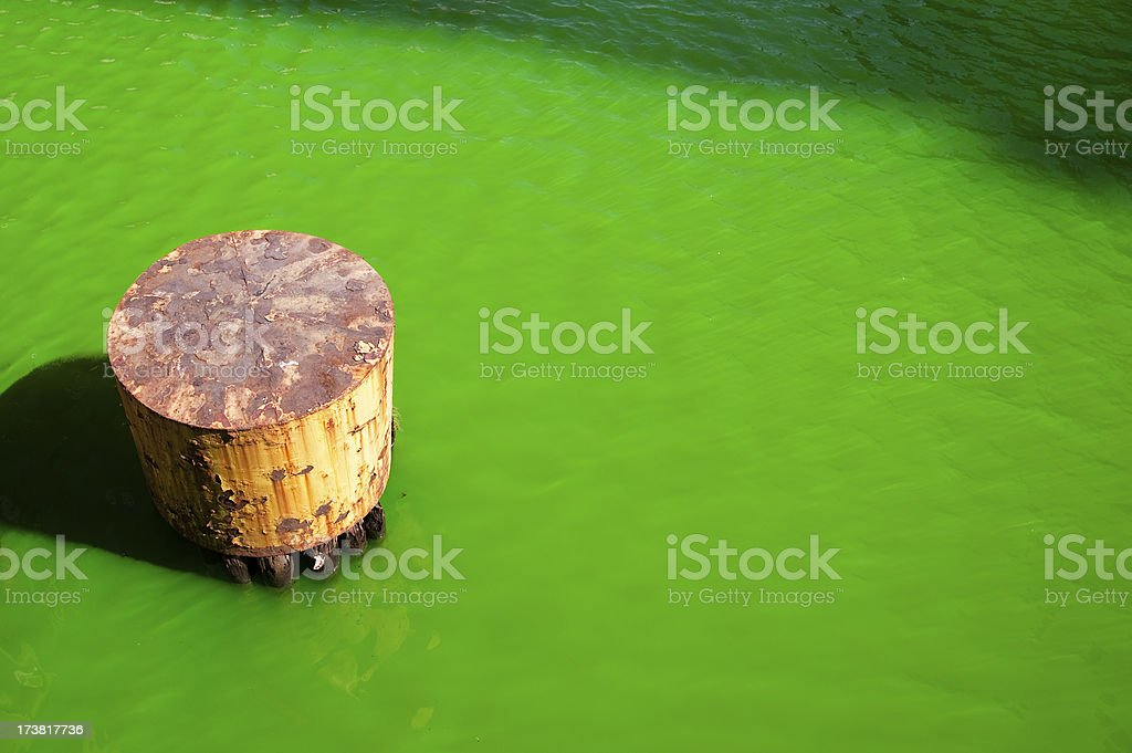 Chicago River on St. Patrick's Day royalty-free stock photo