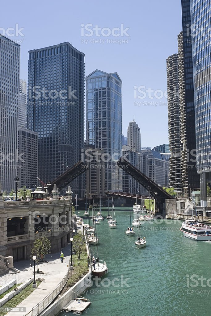 Chicago River Sailboat Migration royalty-free stock photo