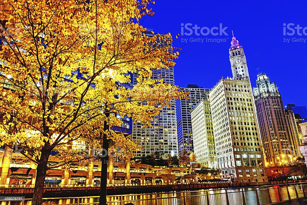 Chicago River view at dusk in autumn stock photo