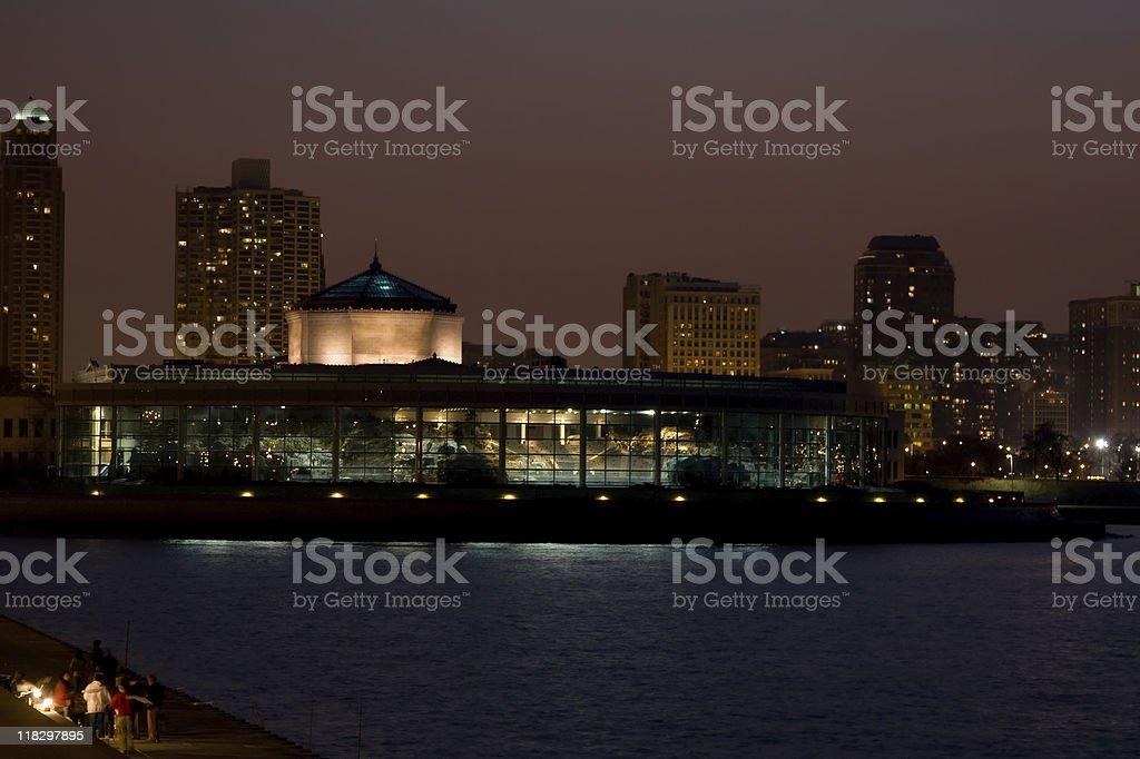 Chicago Shedd Aquarium stock photo