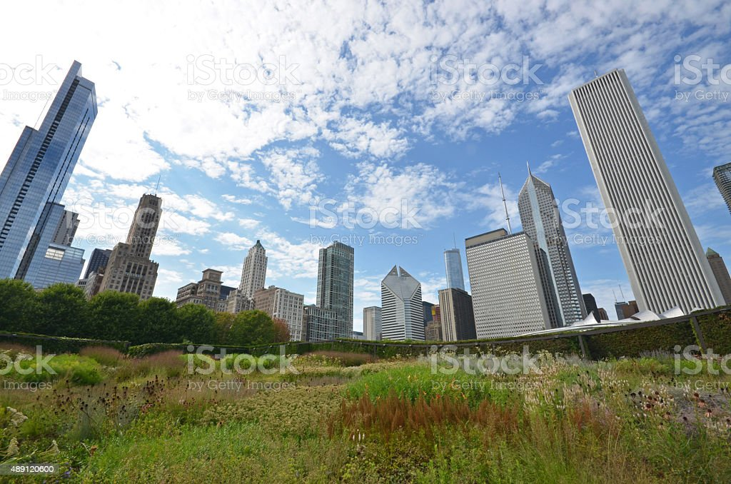 Chicago skyline grant park stock photo
