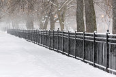 Chicago Snow Storm