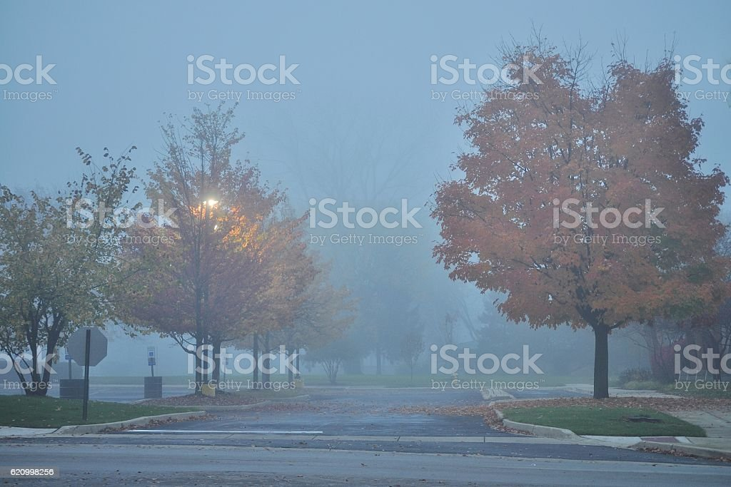 NW Chicago suburb in a dense foggy morning/ night. stock photo