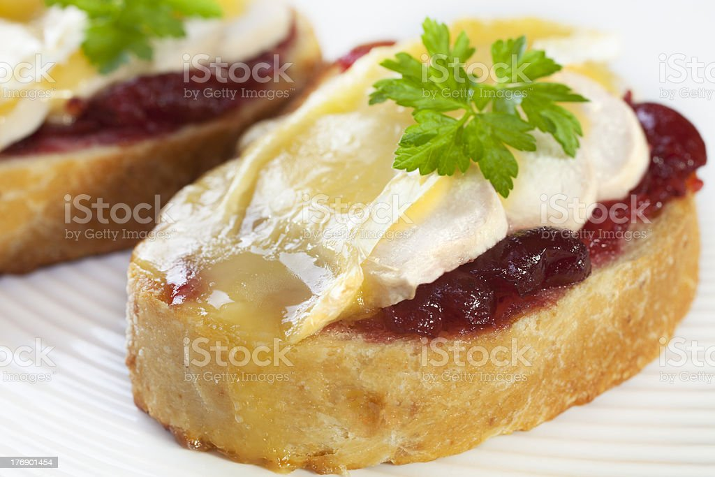 Chicken and Brie Melt with Cranberry stock photo