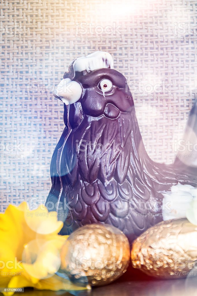 Chicken and chocolate eggs to celebrate Easter with spring flowers stock photo