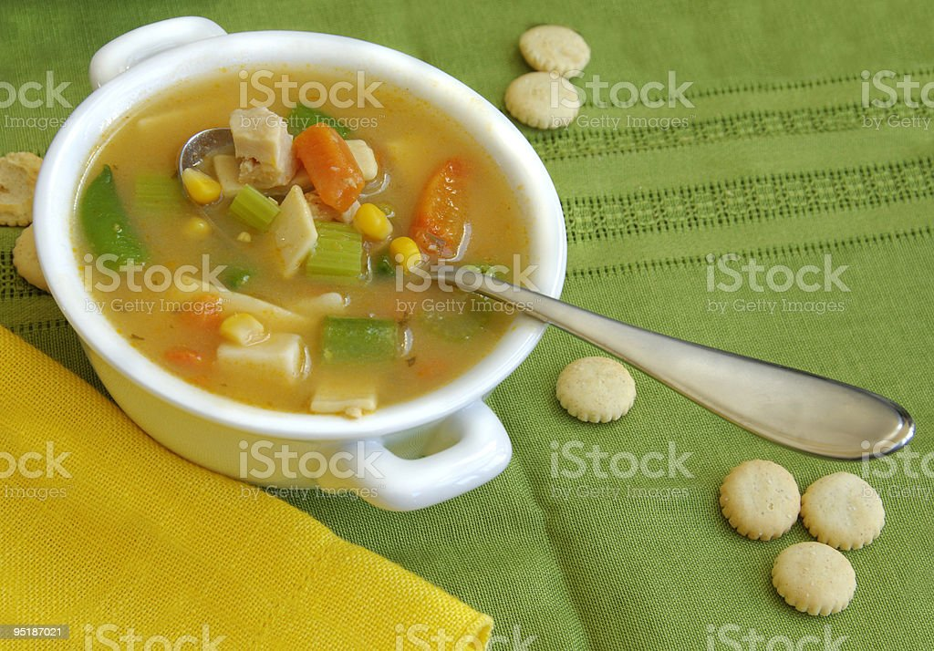 Chicken and Vegetable Soup royalty-free stock photo