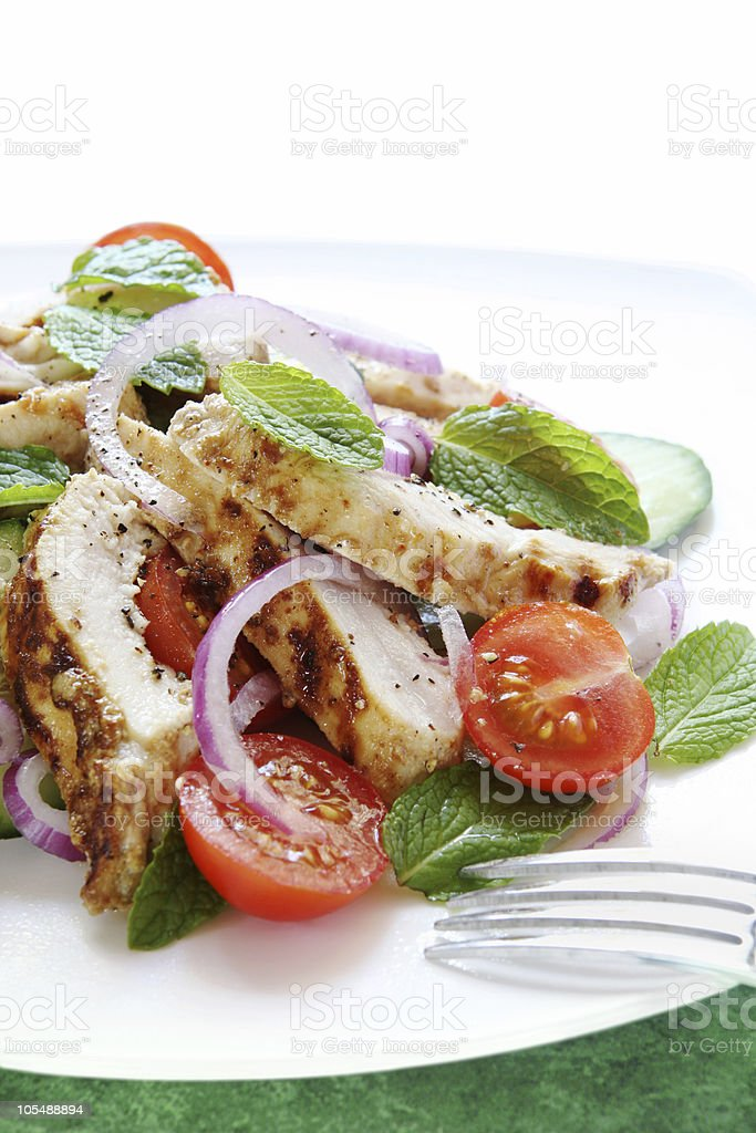 Chicken Cucumber and Mint Salad royalty-free stock photo
