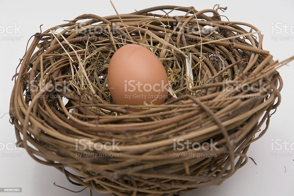 Chicken egg in a nest royalty-free stock photo