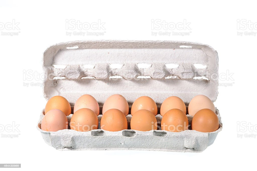 Chicken egg in the package stock photo